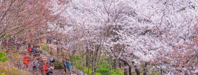 Πάρκο MacArthur στο Ίντσεον της Νότιας Κορέας.