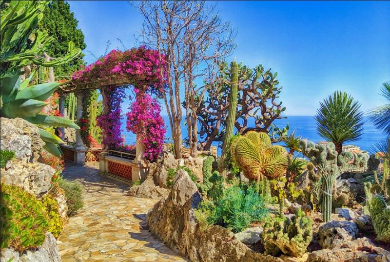 Εξωτικός κήπος του Μονακό - Jardin Exotique, Monaco.